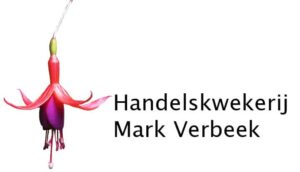 Mark Verbeek