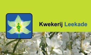 Kw Leekade